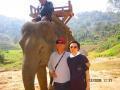 象さんに乗りました。山道を超え滝を観に行きました。途中で象から落ちそうになり、腕に力を入れていたせいで筋肉痛になってしまいました(><)