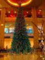 去年撮影したコンラッドホテルの巨大ツリーです。